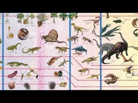 printable montessori timeline of life alison s montessori tl05 timeline of life tl05 a