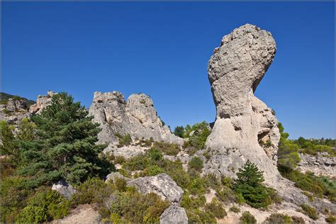 Le Patio Formation by Le Patio Formation