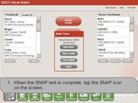 snap test ivls entering idexx snap test results