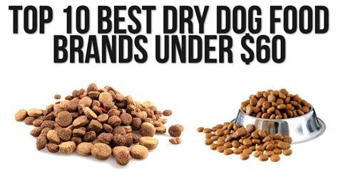 top 10 foods for puppies senior food top food