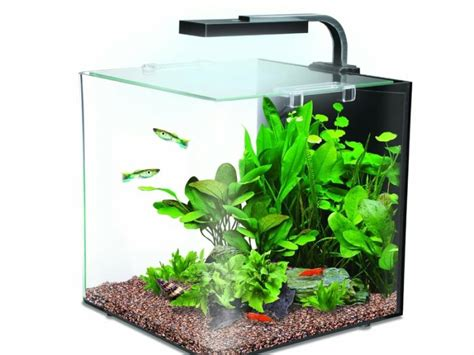 design aquarium nano 12 litre nano aquarium minimalist design built in pump