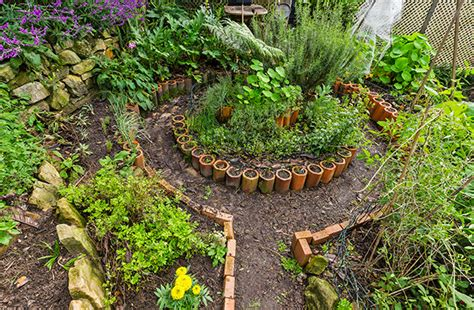 permaculture vegetable garden layout the gallery for gt permaculture vegetable garden layout