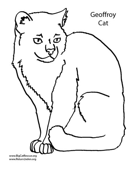 cool cats coloring pages free coloring pages of cool cat
