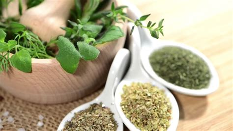 herbal stock footage video shutterstock