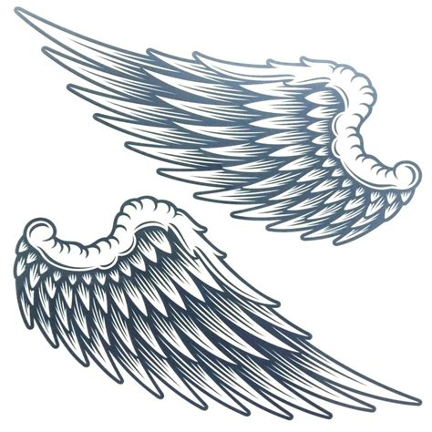 sticker salon design ailes d