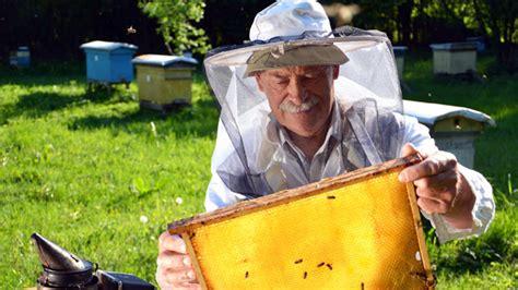 honig schleudern wann wann ist bio honig wirklich bio