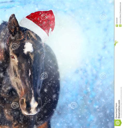 Shabby Chic Sofa by Horse With Santa Hat In Showfall Christmas Background