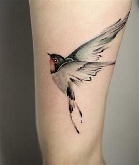 fotos de tatuagem de p 225 ssaros fotos de tatuagens