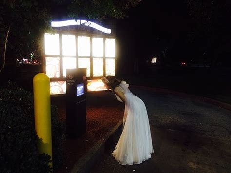 drunk bride orders taco bell  wedding dress   hero