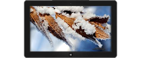 theme long definition microsoft rolls out winter garden windows theme free