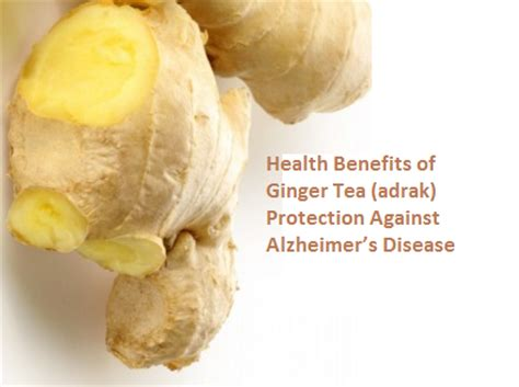 ginger is a disease amazing health benefits of ginger tea adrak pintoos