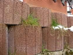 blumenkübel pflanzen blumenk 195 188 bel aus einem beton bimsstein