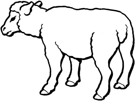 sheep coloring page free printable sheep coloring pages for