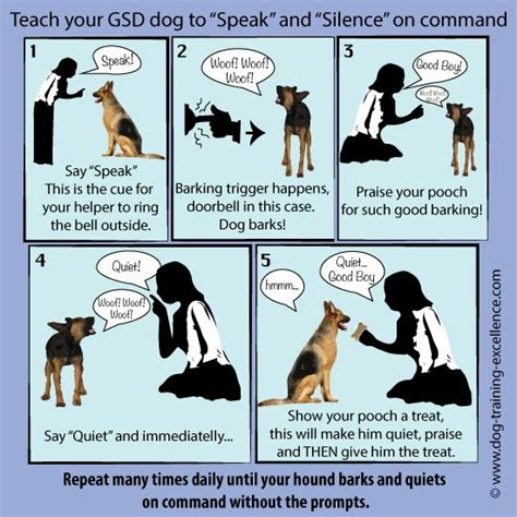 how to to bark on command best 25 german shepherd ideas on