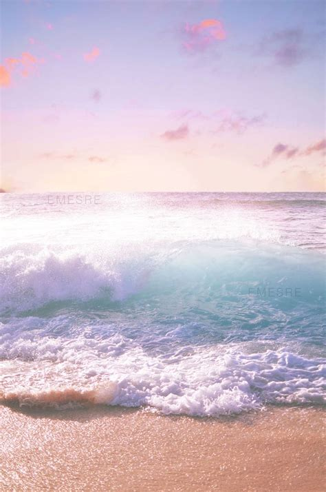 47 Tshirtkaosraglananak Oceanseven best 25 ideas on the sea foam and pictures of sea turtles