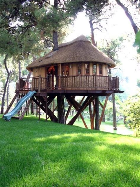 Backyard Treehouse 25 Tree House Designs For Backyard Ideas To Keep