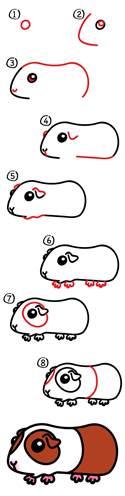 draw guinea pig art kids hub