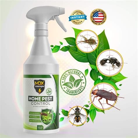 organic bug spray  home budapestsightseeingorg