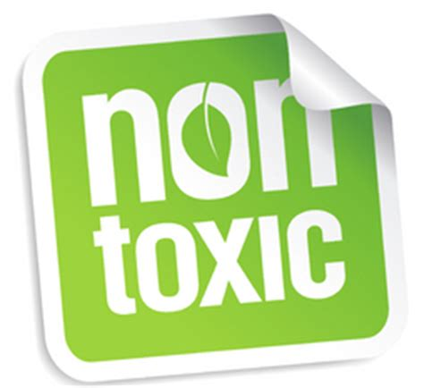 my toxic non toxic pic get fit go figure