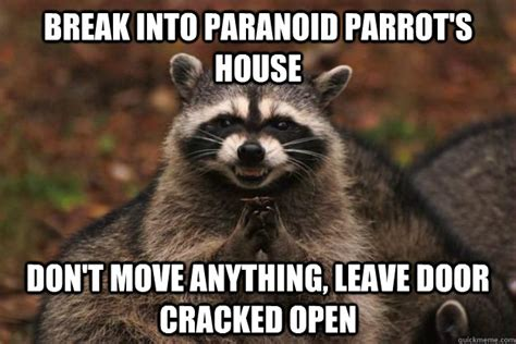 Raccoon Excellent Meme - break into paranoid parrot s house don t move anything