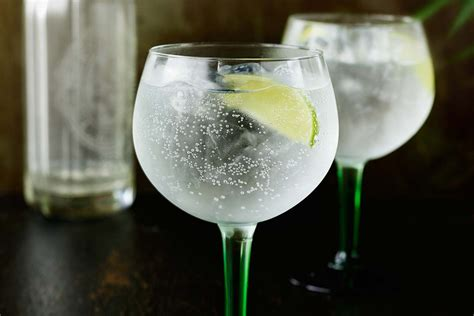 perfect gin tonic cocktail recipe how to make a perferct g t