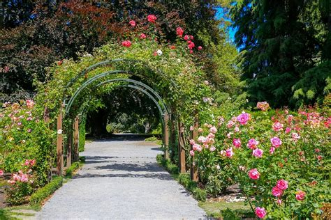 Things To Do At Botanic Gardens Things To Do In Christchurch With Family Travel Travel With