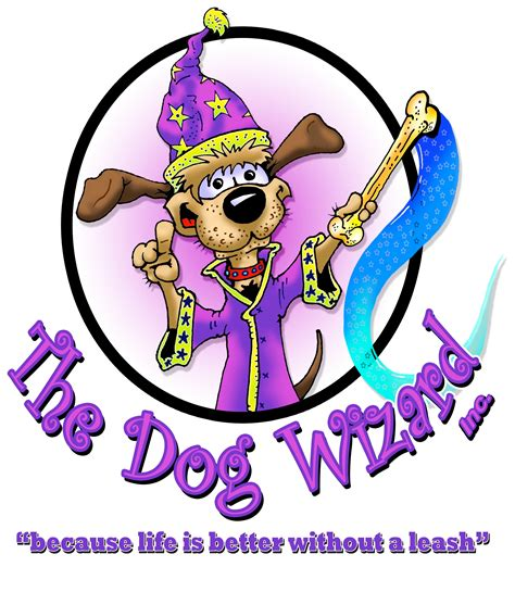 the dog house charlotte nc the dog wizard in charlotte nc 28203 chamberofcommerce com