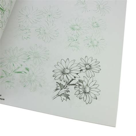 Draw 50 Flowers Trees And Other Plants draw 50 flowers trees and other plants by j ames