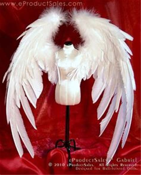 jointed doll wings bird wing anatomy diagram search pictures photos