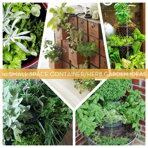 10 Small Space Container And Herb Garden Ideas Curbly Container Herb Garden Ideas