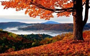 fall landscape beautiful autumn landscape wildlife archives wildlife