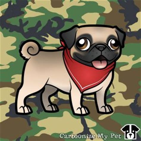 smutty fawn pug 12 best pugs images on pet pet beautiful dogs and dogs