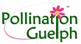 Property Manager Guelph Green Solution Property Management Guelph Landscaping