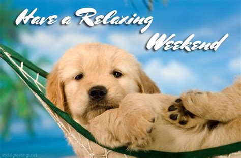 Weekend Relaxing by Relaxing Weekend Quotes Www Pixshark Images
