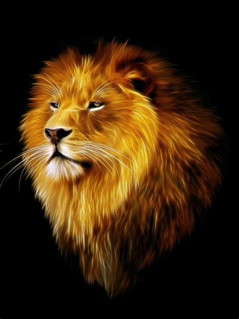 imagenes leones llorando lion graphics male lion fractal digital art vida