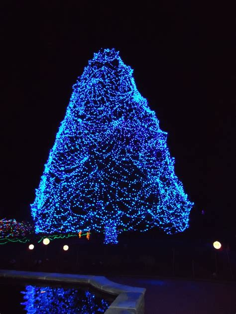 toledo zoo lights before christmas holiday lights
