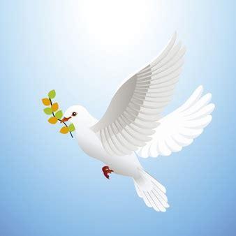 imagenes de luto con palomas friedenstaube vektoren fotos und psd dateien