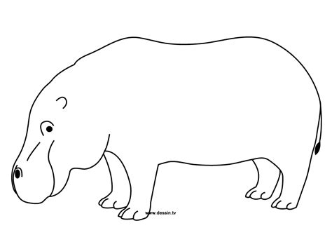 christmas hippo coloring page free coloring pages of drawings of hippo