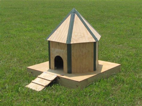 shelter house plans domestic duck house plans ma