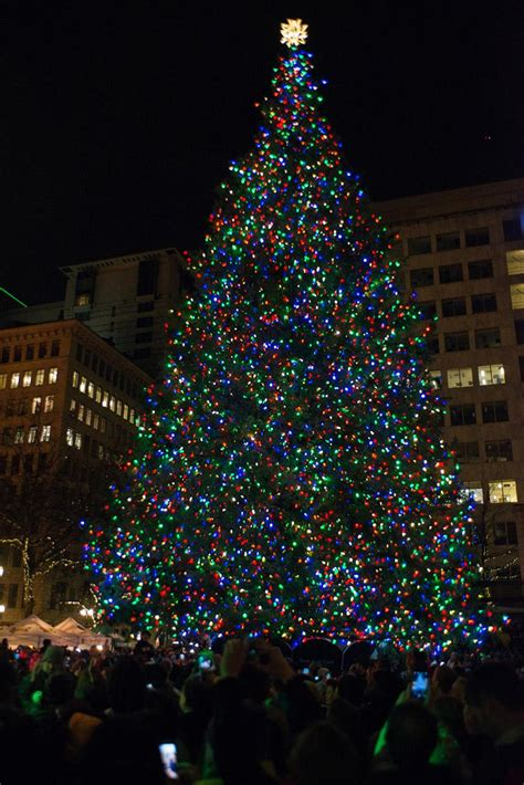 photos 2016 portland tree lighting at pioneer square kval