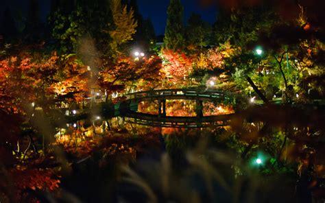 Craigslist Dining Room Set Japanese Garden At Night