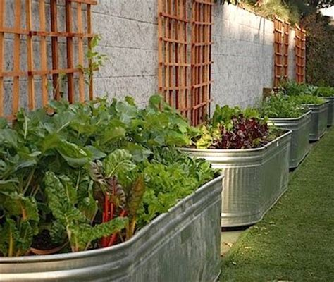 Elevated Container Garden Planters by 30 Best Images About Trough Garden On Gardens