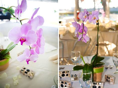 orchids wedding centerpieces light purple orchid centerpieces wedding ideas