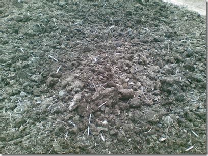 Harga 1 Kg Pupuk Kandang Sapi 13 kelebihan pupuk organik dibanding kimia gerbang pertanian