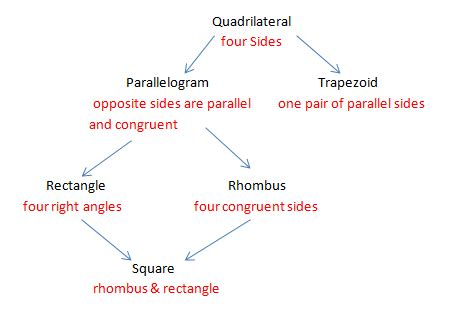 quadrilaterals flowchart quadrilaterals mr nestynunez