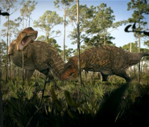 headlines: natgeo features swau dino research project