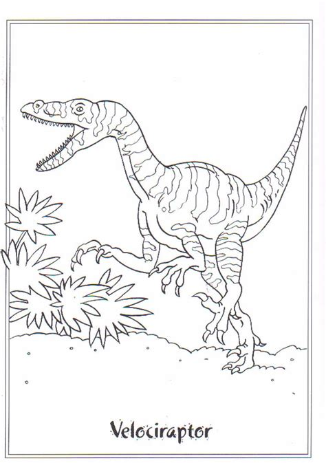 Velociraptor Pictures Coloring Images Velociraptor Coloring Page