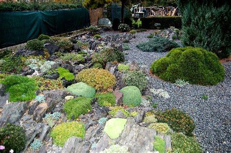Alpine Garden by 24 October 2012 Northumberland Alpine Gardener S Diary