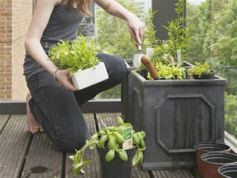kräutergarten bauen balkon idee kinder