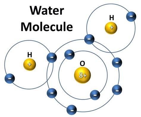 diagram of water molecule the last cordwainer chemicals and the toxicity of